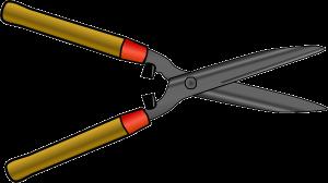Heckenschere zum Kirschlorbeer schneiden
