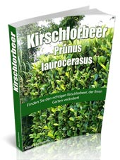 kirschlorbeer-ebook